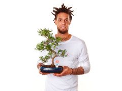 "Daniel Hackett testimonial della campagna ""Un bonsai per Anlaids"""