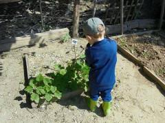 Esempio di agrinido nella regione Marche