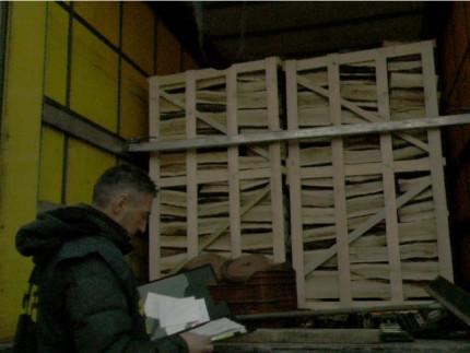 Controlli sul legname importato
