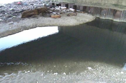 inquinato un tratto del torrente Rubbiano