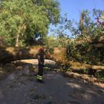Maltempo: danni a Serra de' Conti