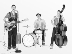 The Domestic Bumblebees al Summer Jamboree di Senigallia