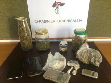 Stupefacenti sequestrati dai Carabinieri di Senigallia