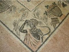 Mosaico della Città Romana di Suasa