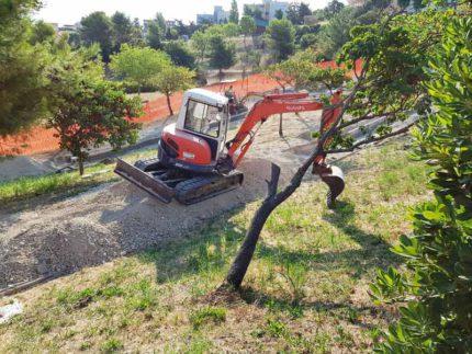 Manutenzione del parco di via Sardegna a Falconara