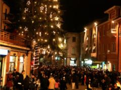 Accensione dell'albero di Natale a Sassoferrato
