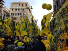 Manifestazione Coldiretti a Roma