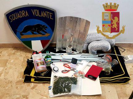 Coltivazione di cannabis scoperta ad Ancona