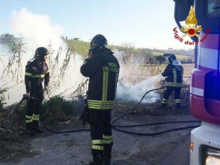 Incendio di sterpaglie a Maiolati Spontini