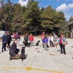Corso rivolto a proprietari di cani a Falconara