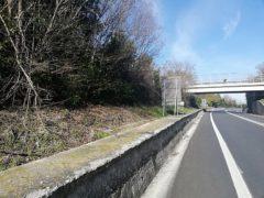 Area dove sorgerà un nuovo autovelox sulla SS16 a Falconara
