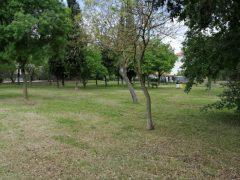 Parchi, verde pubblico