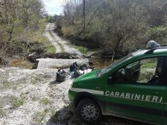 Rifiuti abbandonati a Sassoferrato