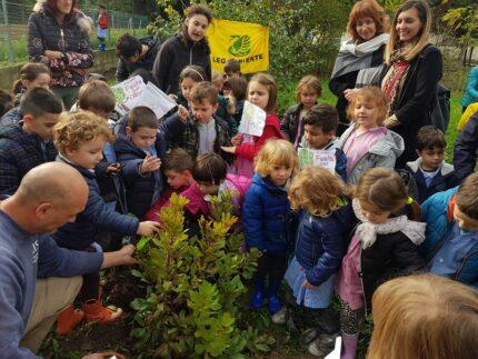 Festa dell'albero a Falconara